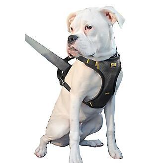 Kurgo Impact Dog Seatbelt Harness