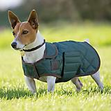 Digby and Fox Quilted Coat