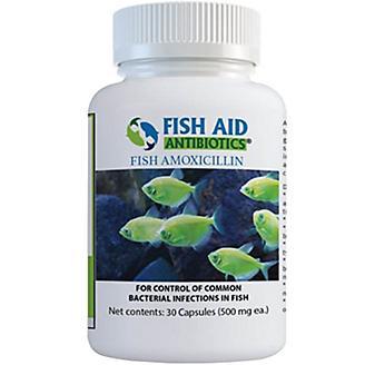 Fish Amoxicillin Capsules 500mg 30 Count