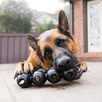KONG Extreme Goodie Ribbon Dog Toy