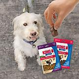 KONG Bites Dog Treat 5oz