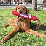 KONG Signature Stick W/Rope Dog Toy