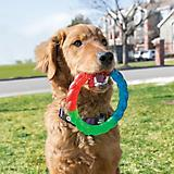 KONG Twistz Ring Dog Toy