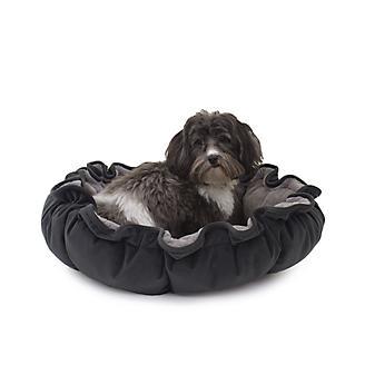 Carolina Pet Charcoal Lily Pad Bed