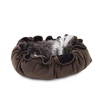 Carolina Pet Chocolate Lily Pad Bed