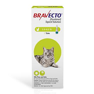 Bravecto Topical for Cats 12 Week Dose