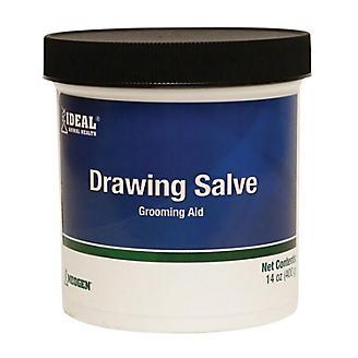 Ideal Drawing Salve