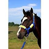 Reflective Bridle or Halter Tube Set