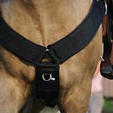 Western Nylon Wide Straight Breast Collar