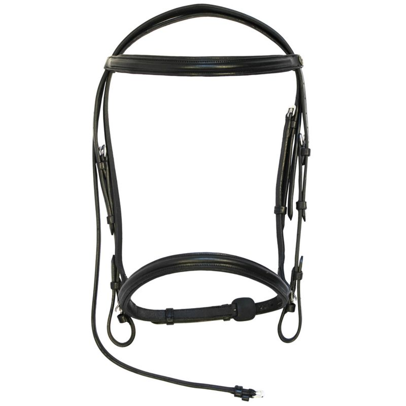 Bridle And Bit Facts - Statelinetack com