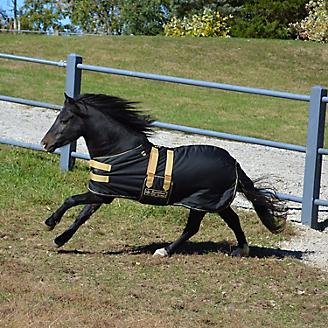 Ozark Mini/Pony Roustabout Blanket