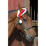 Holiday One Ear Horse Santa Hat