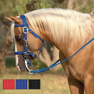 BLACK Durable Nylon Combination Halter Bridle w// 7/' Reins!! NEW HORSE TACK!!!