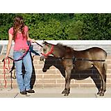 Weavers Tack Mini Halter Training Surcingle