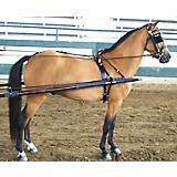 Rolled Dual Headstall Leather Pony Show Harness Sm