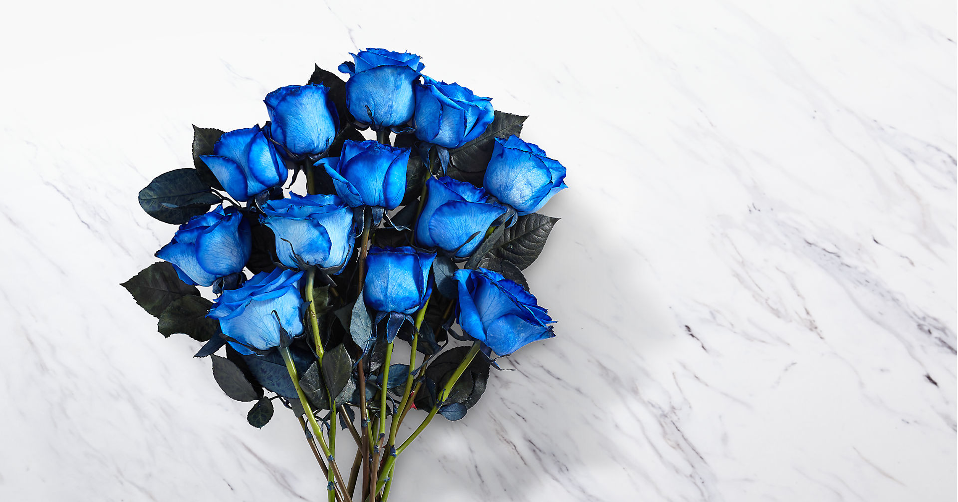 Extreme Blue Hues Fiesta Rose Bouquet - 12 Stems - VASE INCLUDED - Image 2 Of 2