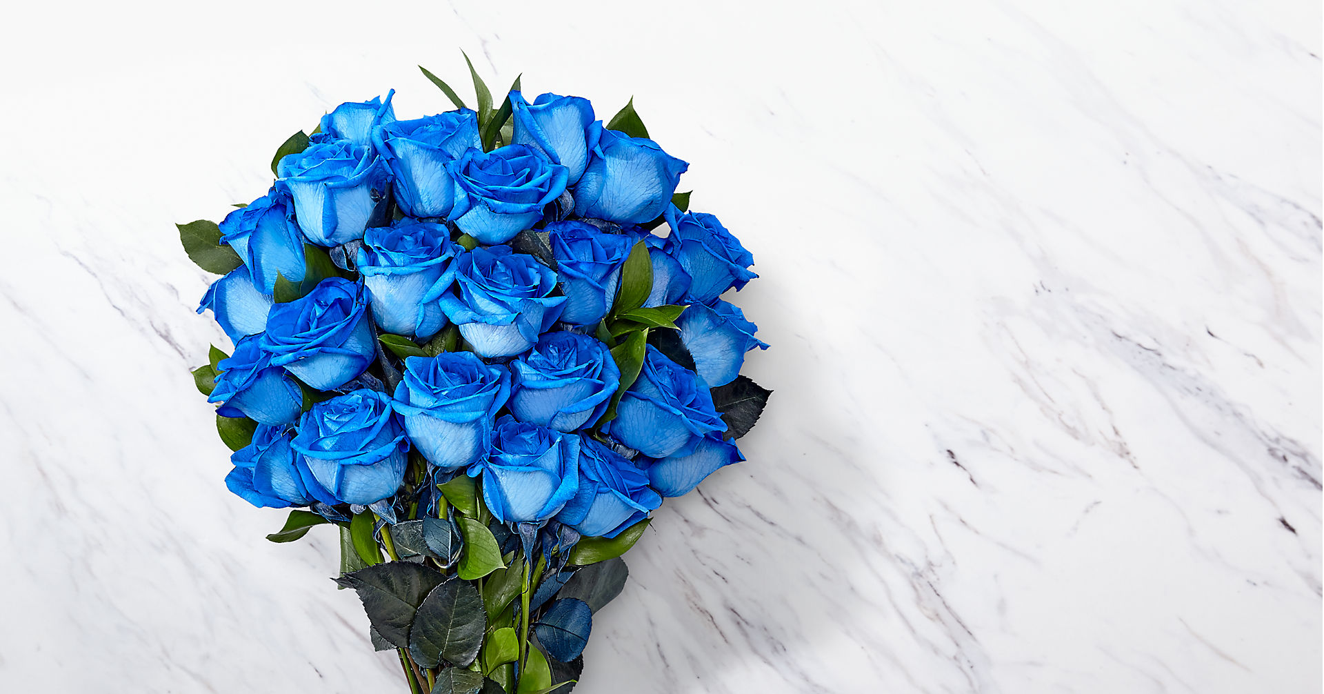 Extreme Blue Hues Fiesta Rose Bouquet - 24 Stems - VASE INCLUDED - Image 2 Of 2