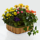 Gentle Blossoms™ Basket - Thumbnail 1 Of 2