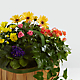 Gentle Blossoms™ Basket - Thumbnail 2 Of 2