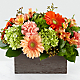 Hello, Gorgeous™ Bouquet - Thumbnail 1 Of 4