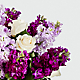 Sweet Devotion™ Bouquet - Deluxe - Thumbnail 3 Of 5
