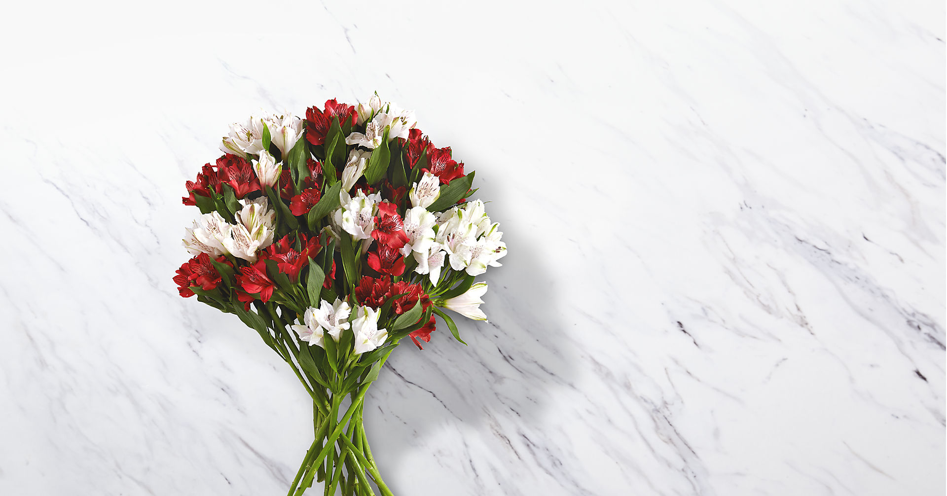 75 Blooms of Candy Cane Peruvian Lilies - Image 1 Of 2