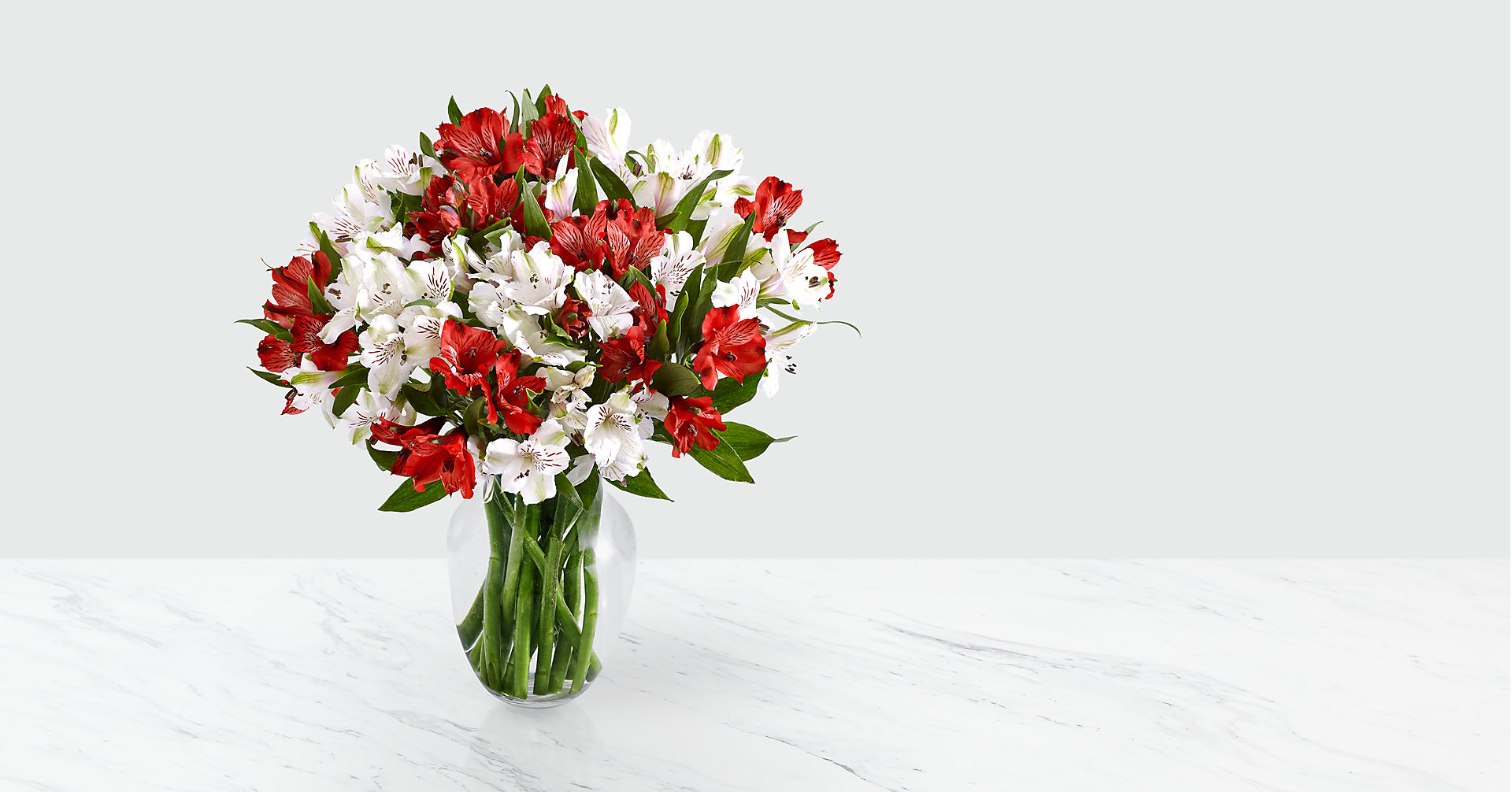 75 Blooms of Candy Cane Peruvian Lilies - Image 2 Of 2