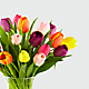 Rush of Color Assorted Tulip Bouquet - Thumbnail 4 Of 4