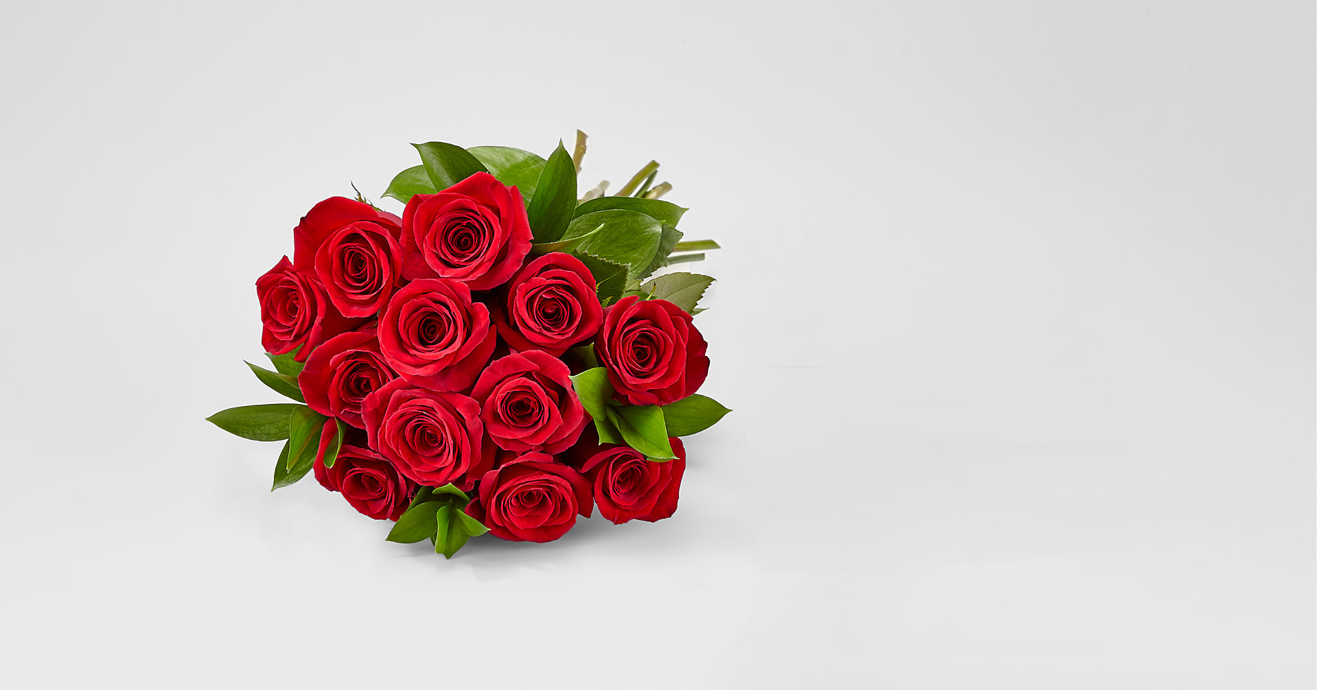 Red 1 Dozen Roses - Image 1 Of 3