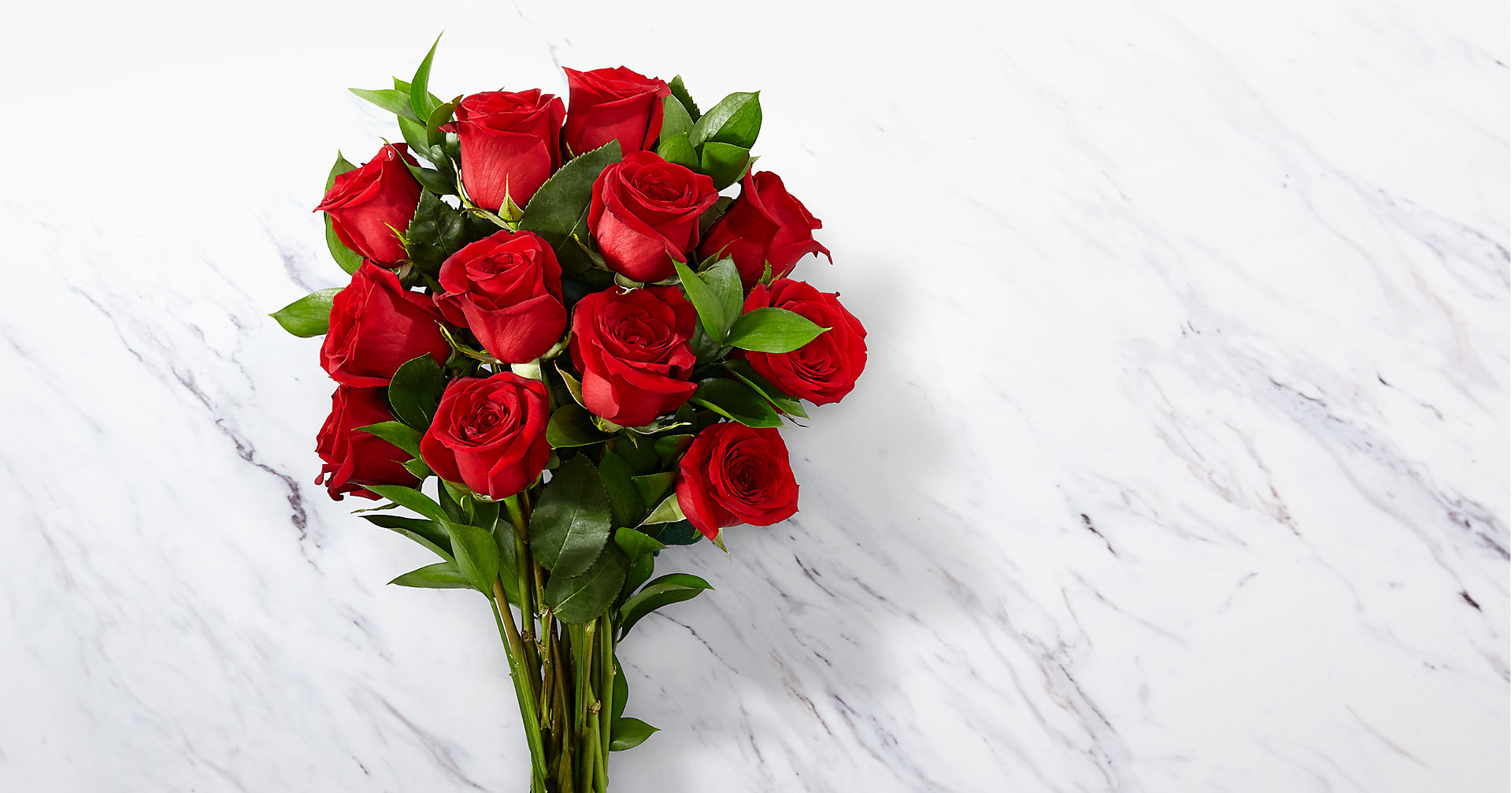 Red 1 Dozen Roses - Image 2 Of 4