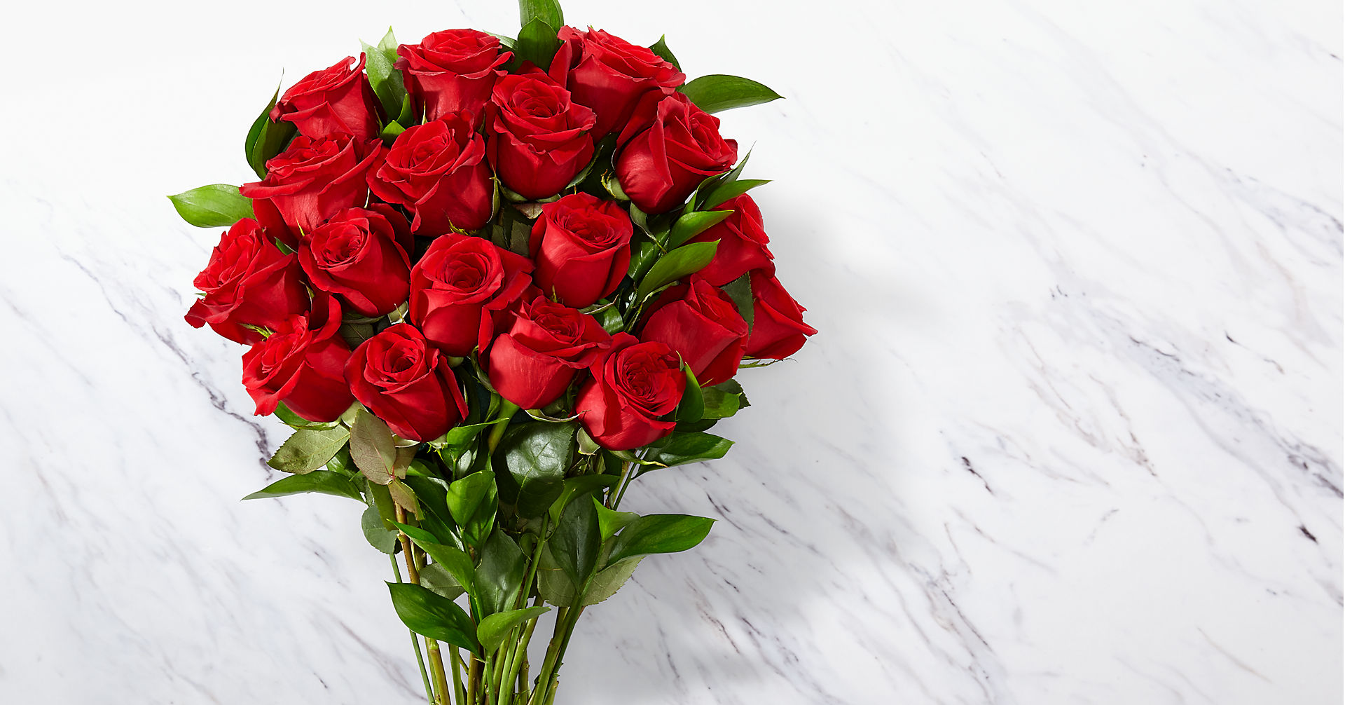 Red 1 Dozen Roses - Image 1 Of 5