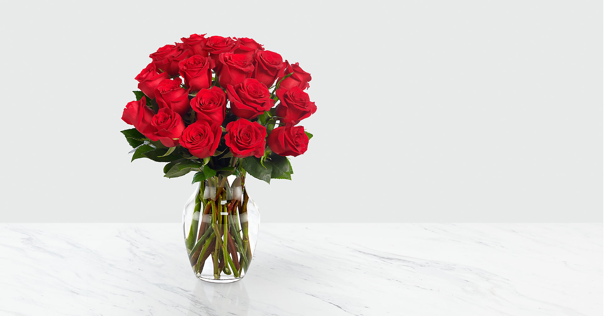 Red 1 Dozen Roses - Image 2 Of 5