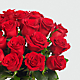 Red 1 Dozen Roses - Thumbnail 4 Of 5