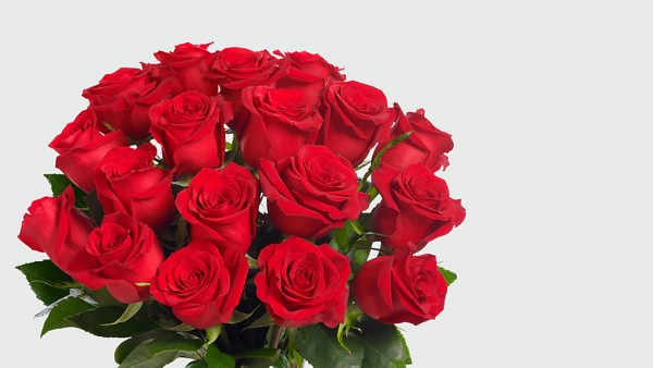 Red 1 Dozen Long Stem Roses - Image 4 Of 5