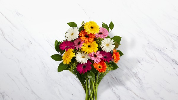 Colorful World Gerbera Daisy Bouquet - 15 Stems - Image 1 Of 2