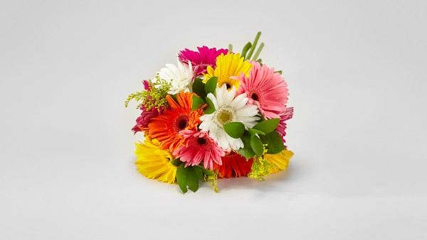 Colorful World Gerbera Daisy Bouquet - Thumbnail 1 Of 4