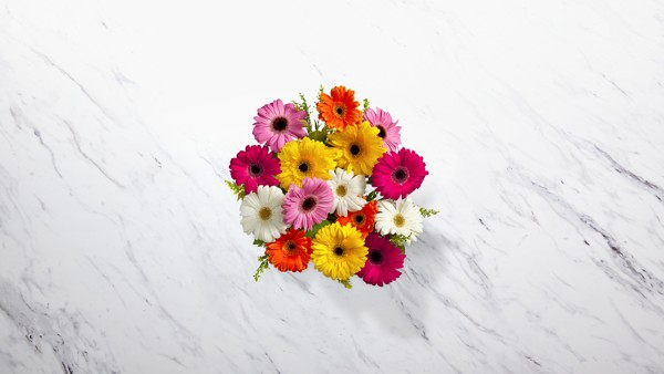 Colorful World Gerbera Daisy Bouquet - Image 3 Of 4