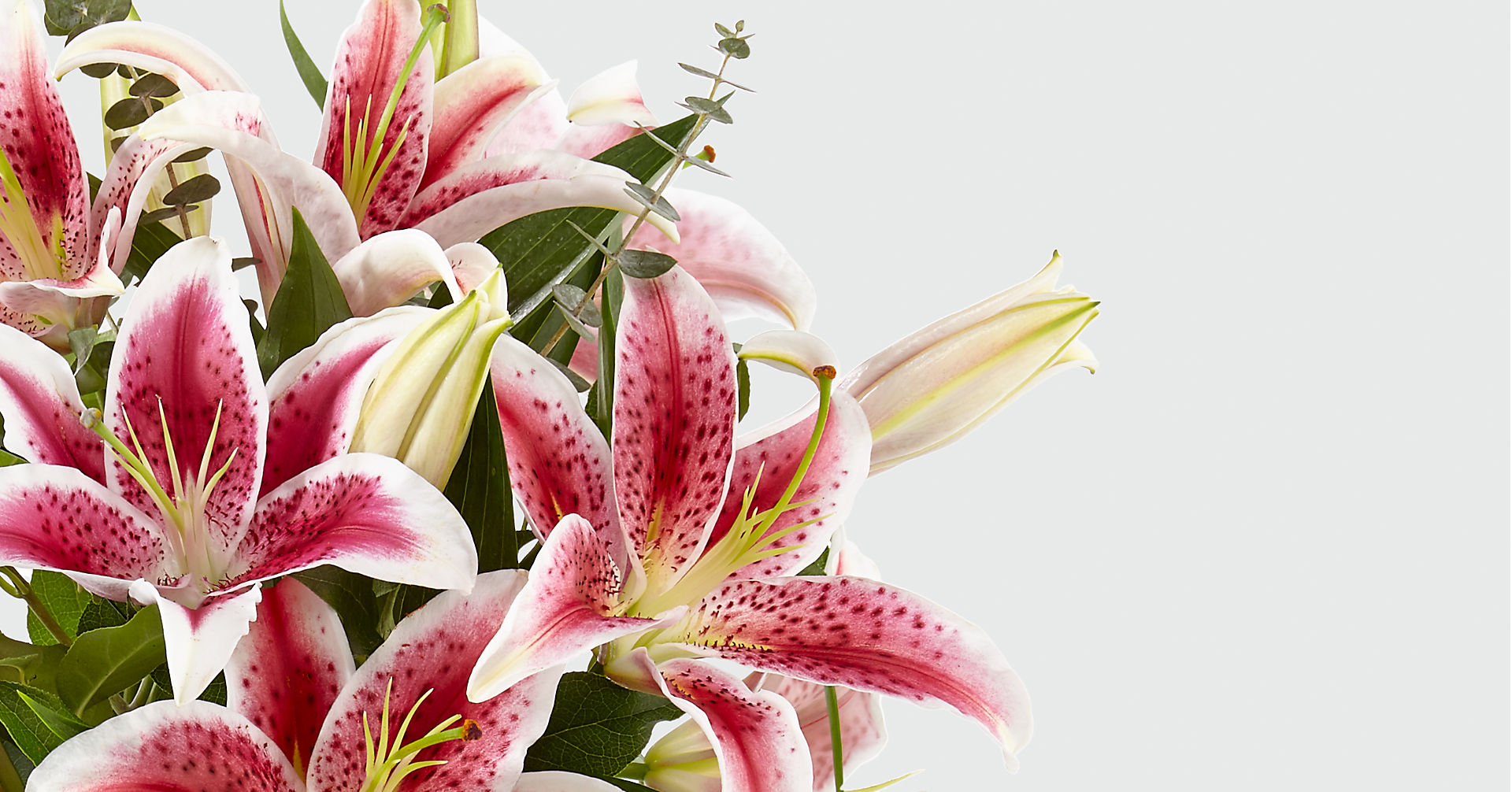 Up Among the Stars Lily Bouquet - Image 4 Of 4