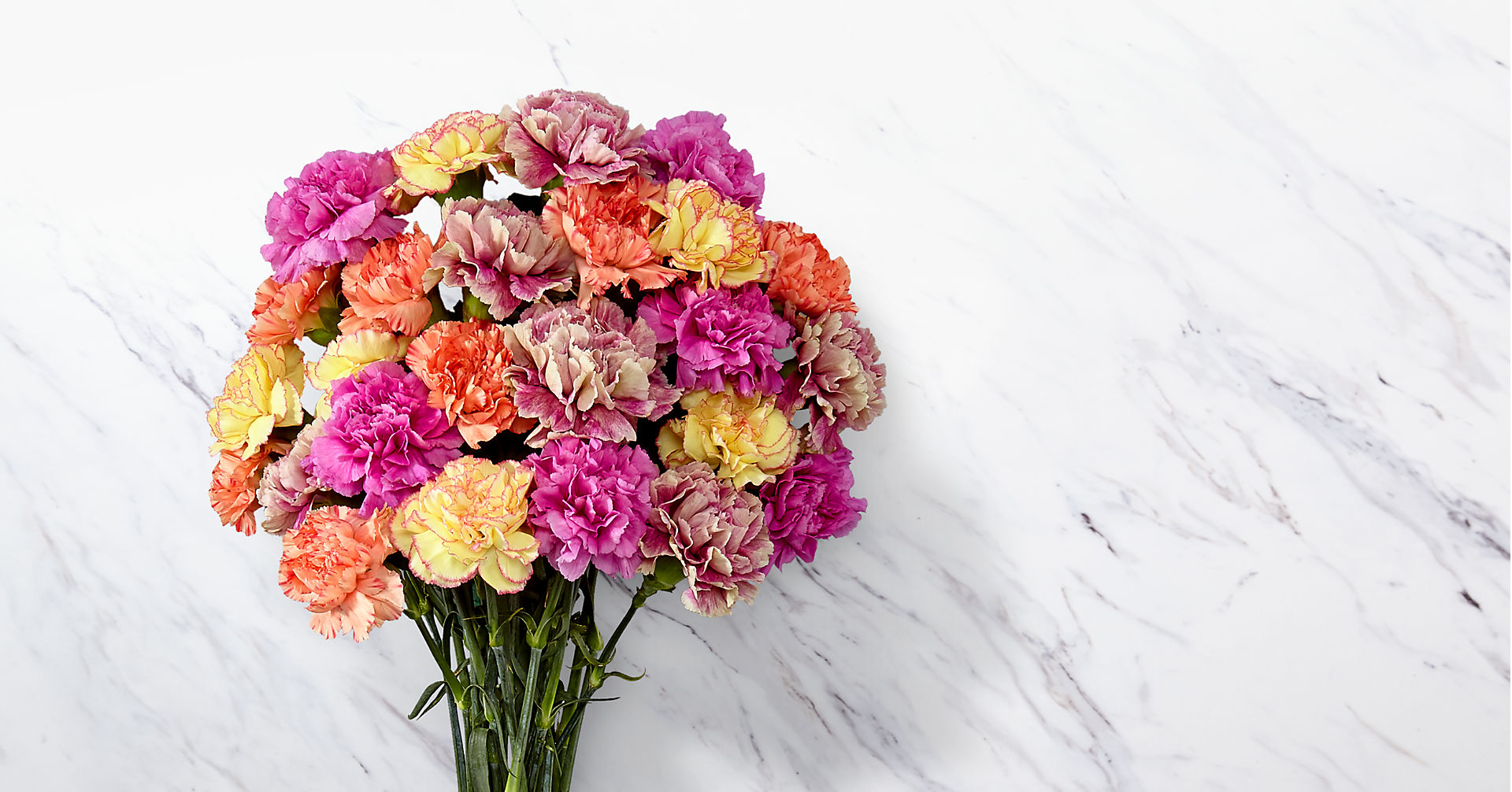 Sweet Carnations Bouquet - Image 1 Of 3