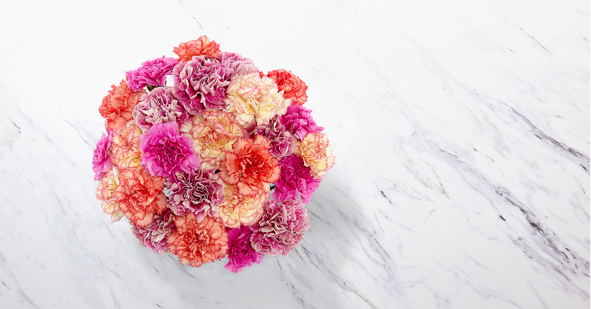 Sweet Carnations Bouquet - Image 2 Of 3