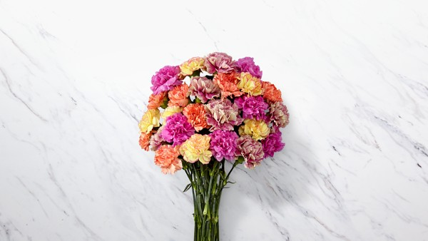 Sweet Carnations Bouquet - Thumbnail 1 Of 4