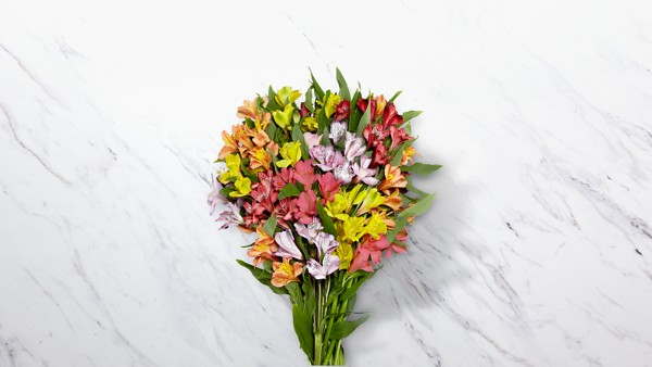 Rainbow Discovery Peruvian Lily Bouquet