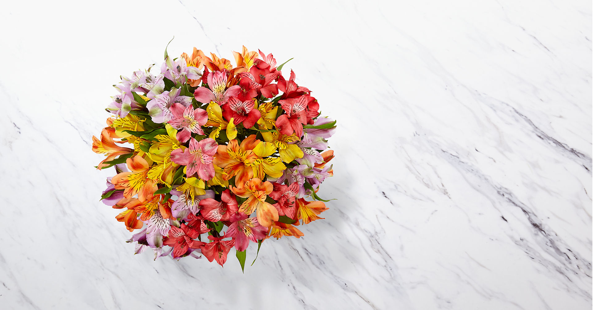 Rainbow Discovery Peruvian Lily Bouquet - 50 Blooms, No Vase - Image 2 Of 3