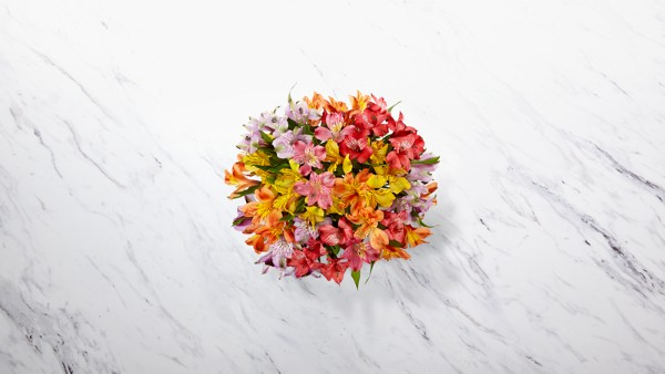 Rainbow Discovery Peruvian Lily Bouquet - Thumbnail 2 Of 3