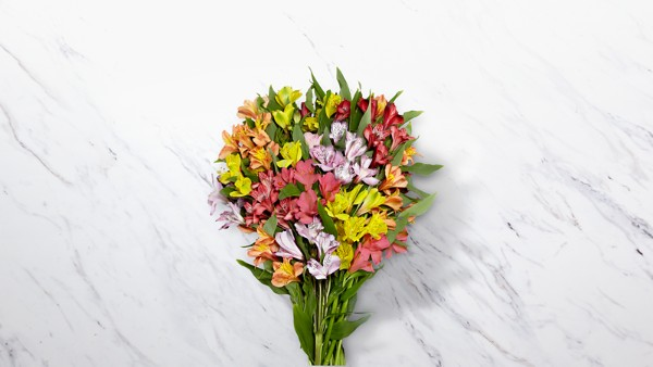 Rainbow Discovery Peruvian Lily Bouquet - 50 Blooms - VASE INCLUDED - Image 1 Of 4