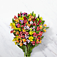 Rainbow Discovery Peruvian Lily Bouquet - 100 Blooms - No Vase - Thumbnail 1 Of 3