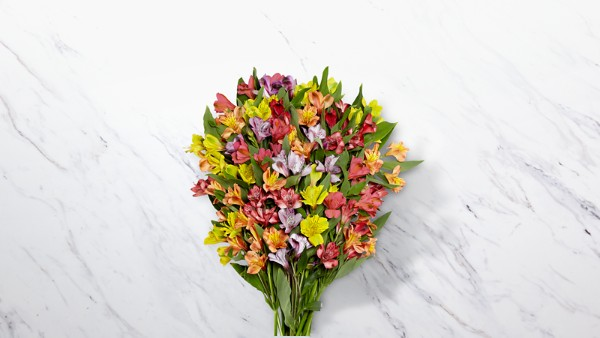Rainbow Discovery Peruvian Lily Bouquet - Thumbnail 1 Of 3