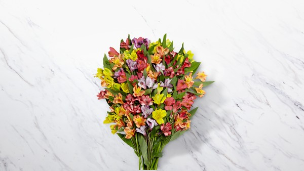 Rainbow Discovery Peruvian Lily Bouquet - Thumbnail 1 Of 4