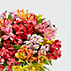 Rainbow Discovery Peruvian Lily Bouquet - Thumbnail 4 Of 5