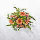Peachy Keen™ Bouquet by FTD® - VASE INCLUDED - Thumbnail 2 Of 3